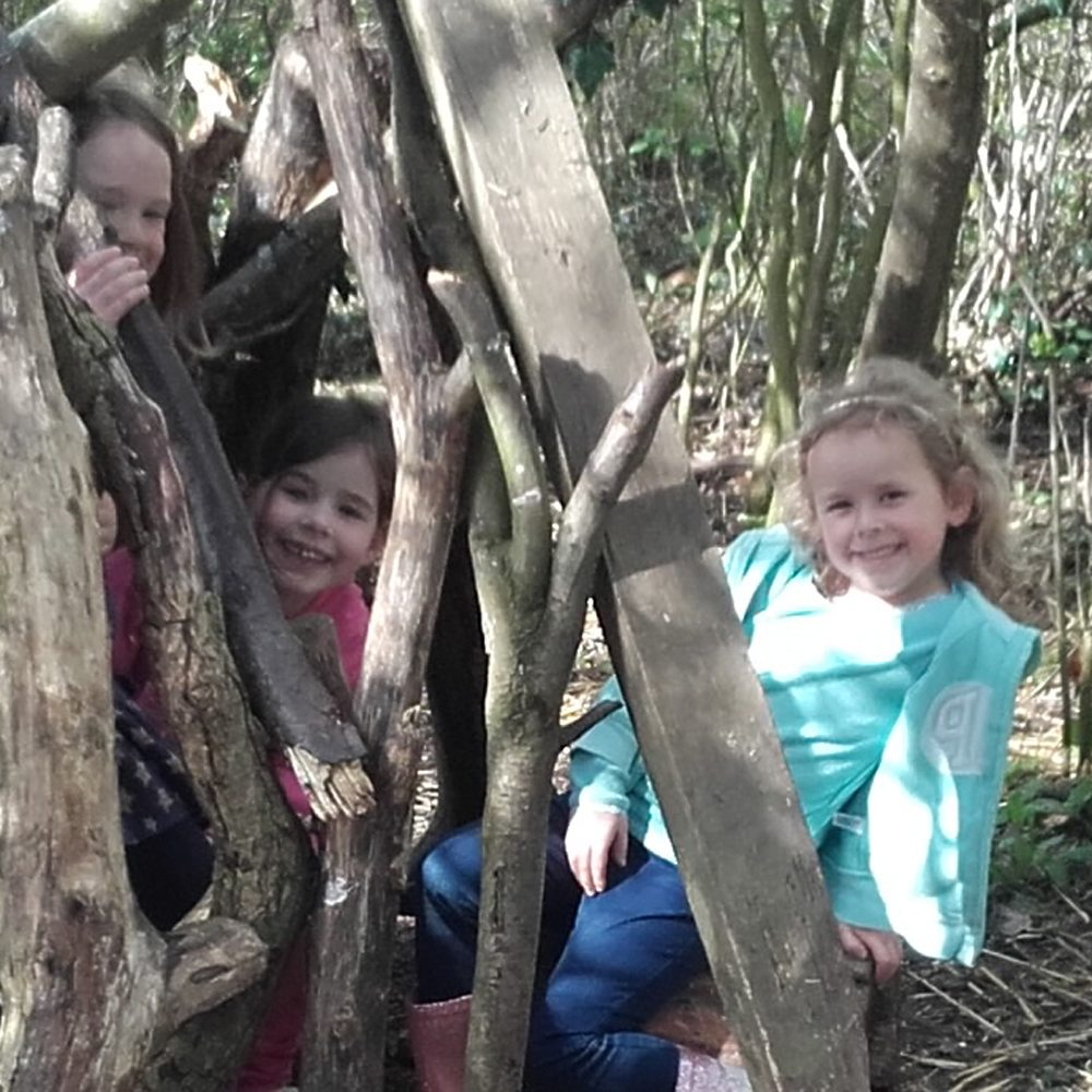 Exploring and den making